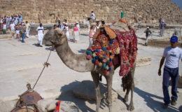 EGITTO Sharm El Sheik 17-31 luglio 2005 (19)
