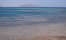 EGITTO Sharm El Sheik 17-31 luglio 2005 (349)