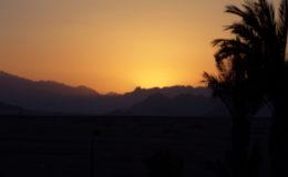 EGITTO Sharm El Sheik 17-31 luglio 2005 (462)