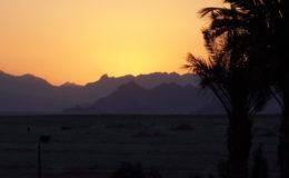 EGITTO Sharm El Sheik 17-31 luglio 2005 (469)
