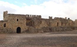 GIORDANIA Castelli del deserto 17-25 feb 2008 (429)