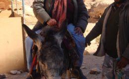 GIORDANIA PETRA 17-25 feb 2008 (351)