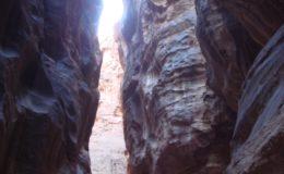 GIORDANIA PETRA 17-25 feb 2008 (390)