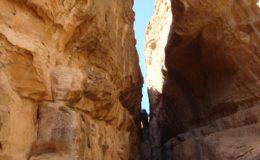GIORDANIA PETRA 17-25 feb 2008 (408)