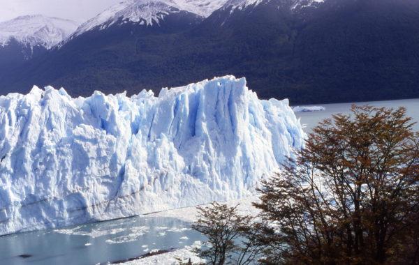 ARGENTINA, Terra del Fuoco, Patagonia.