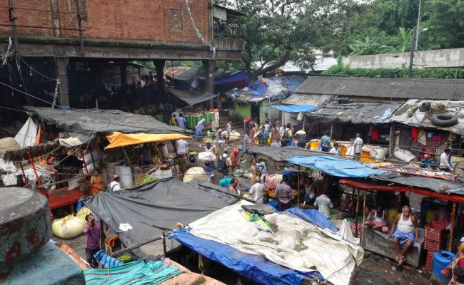 INDIA sulla GANGA 2018 (101)