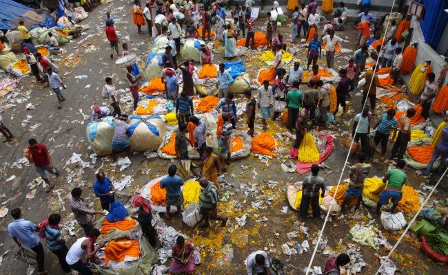 INDIA sulla GANGA 2018 (65)