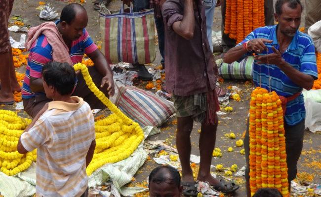 INDIA sulla GANGA 2018 (68)