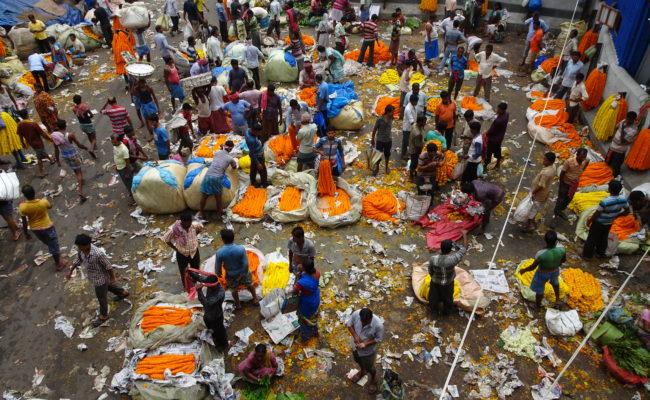 INDIA sulla GANGA 2018 (71)
