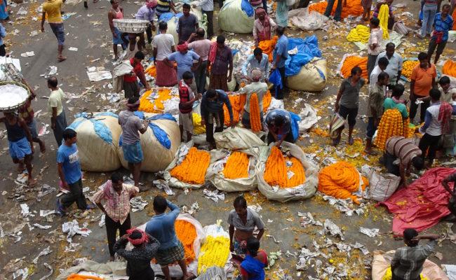 INDIA sulla GANGA 2018 (72)